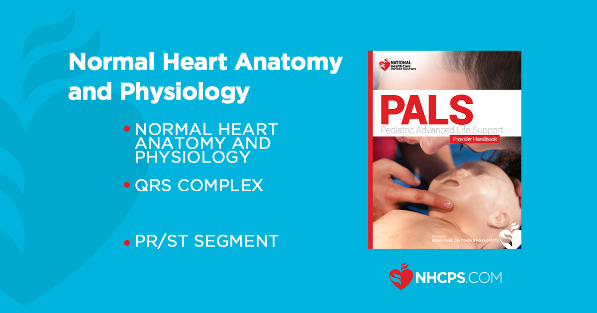 PALS : Normal Heart Anatomy and Physiology Guide