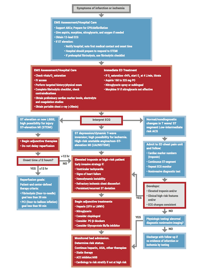 Adult Suspected Stroke Algorithm